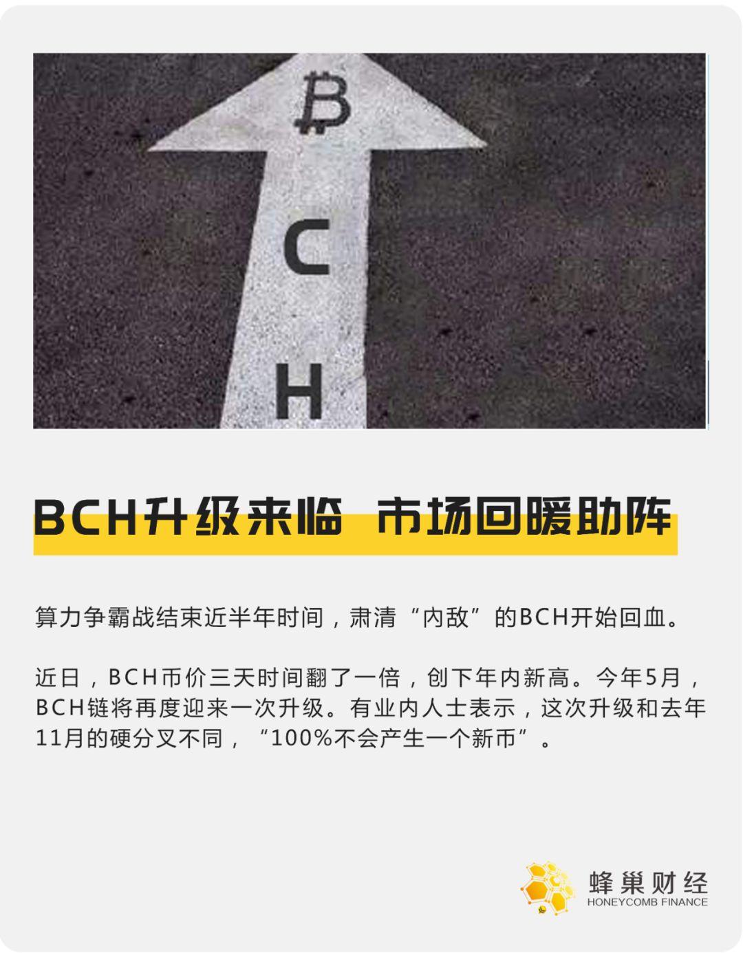 BCH升级来临,市场回暖助阵