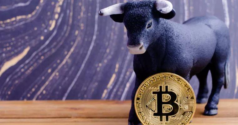 币圈大佬赵东:真正的比特币牛市将在2019年10月开始