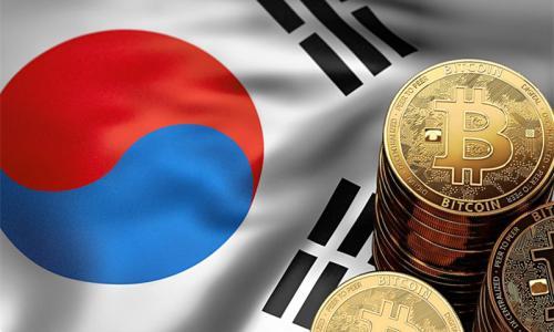 韩国人均加密投资额达6000美元,50岁投资者为市场主力