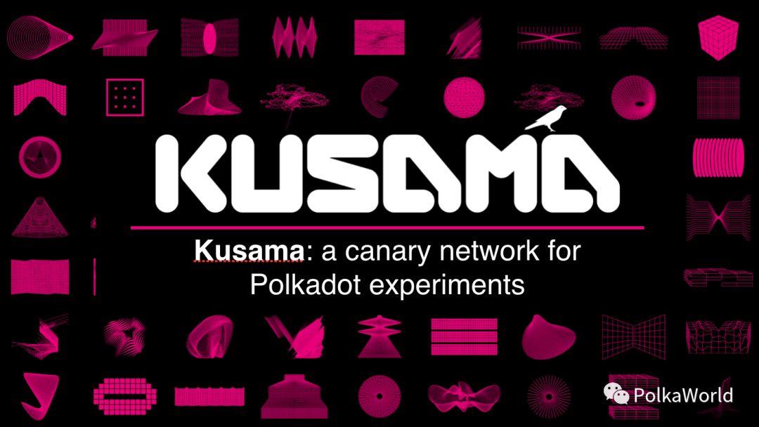 波卡创始人Gavin Wood:波卡发展的5个里程碑和Kusama网络介绍